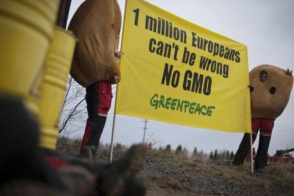 Anti GMO Greepeace.JPG