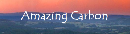 2019-03-10 12_35_41-Welcome to Amazing Carbon!