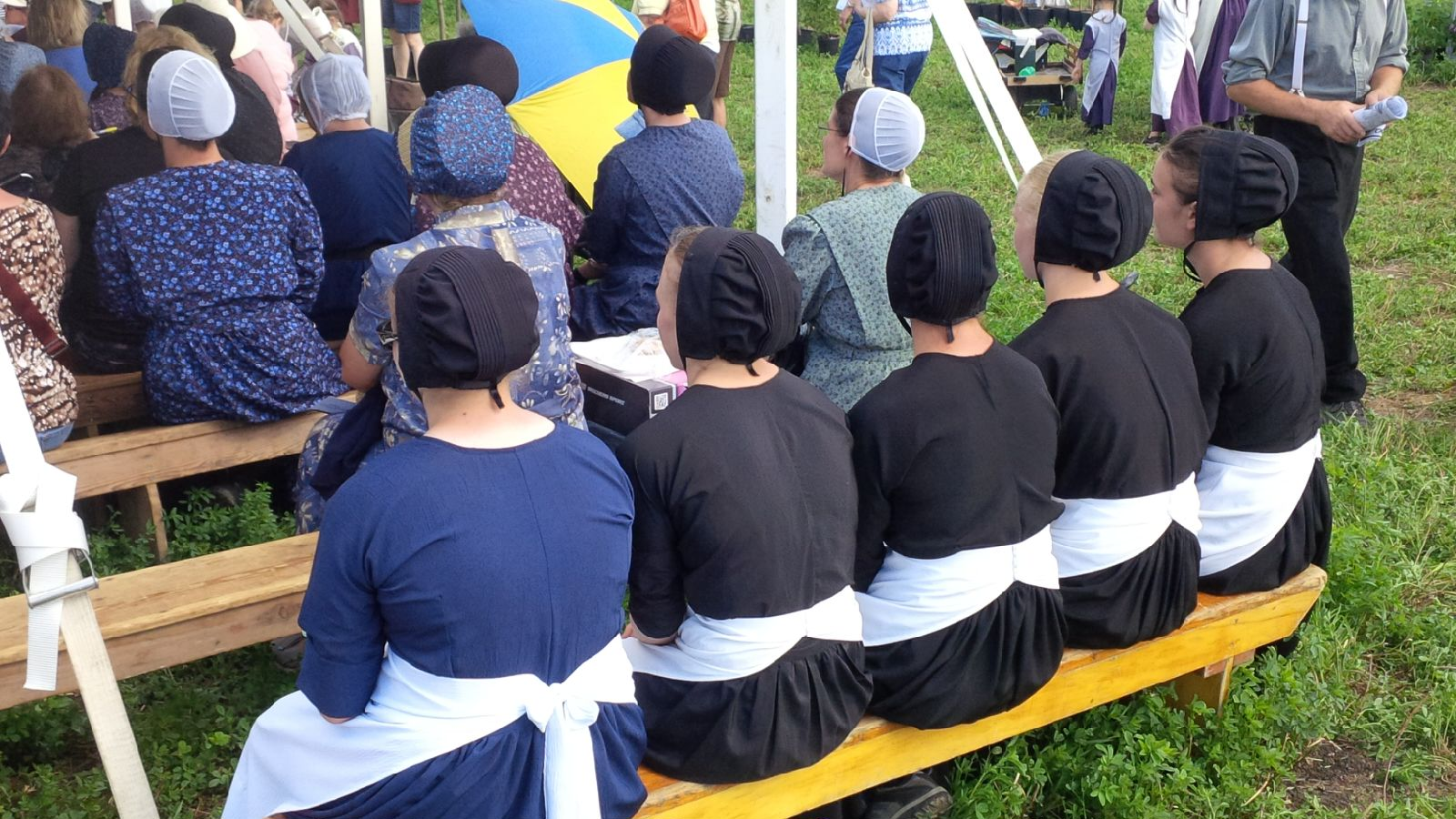 A Brief Guide To Mennonites And Amish Especially Old Order In Ontario Terry Daynard S Blog
